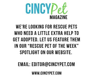 Rescue-Pet-Ad.jpg