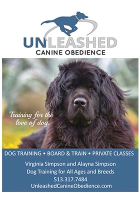 Unleashed-Canine-Obedience-300x400.jpg