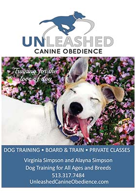 2020-Unleashed-Canine-Obedience-300x400-1.jpg