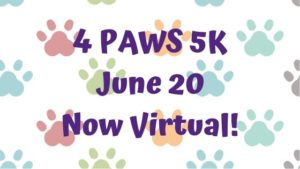 4 Paws Virtual 5K 2020 @ 4 Paws for Ability Facebook page | Yellow Springs | Ohio | United States